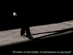 """""""El dolor es inevitable, el sufrimiento es opcional"""". Problemas psicológicos"""